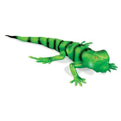 "Geospace ""Real Iguana"" Lifelike Lizard Reptile Toy with Crawling & Nodding Action by Geospace. $20.48. This 19 inch toy iguana replica crawls and moves just like a real live iguana! Looks real too! It's skin is soft, pliable, and cold to the touch. Anatomic details are accurate down to the black stripes and blue ""sub-tympanic"" shield (part of the hearing system) on its jowl.  But what really sets him apart is the way he MOVES! Switch on the battery powered motor..."