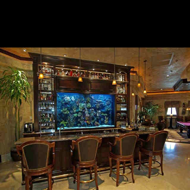 fish tank bar man cave pinterest