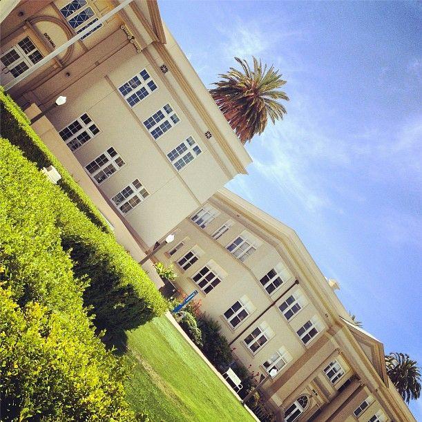 Looks on campus: laurel -