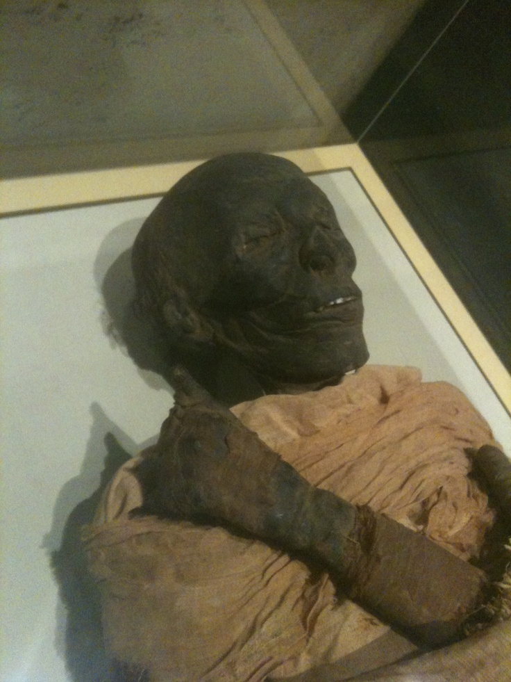 A real Mummy | Humans Remodel Their Dead | Pinterest