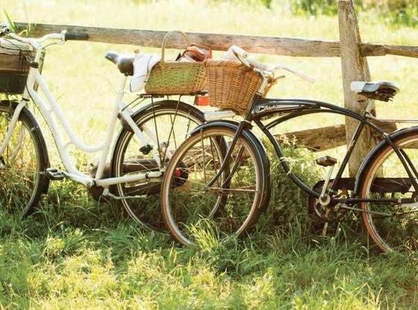 bicycles # summer # outdoor picnics # backyard fun