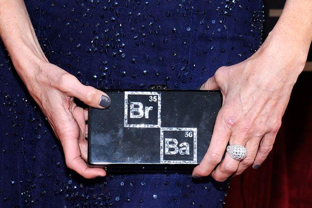 Anna Gunn's clutch from the 2014 SAG Awards