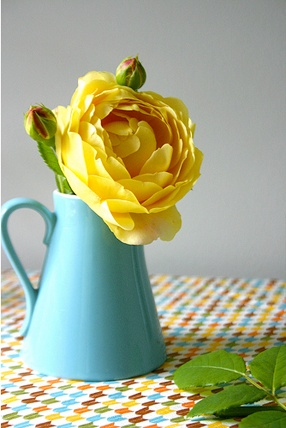 1800 flowers tulips