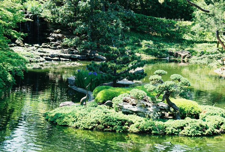 Japanese Gardens Fort Worth Texas Pinterest