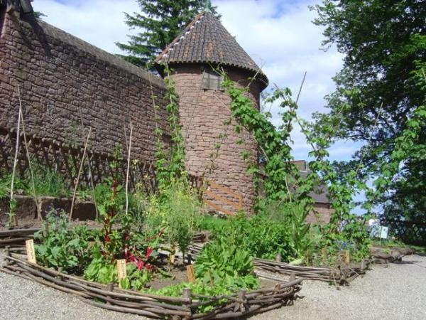 medieval garden Gardens Pinterest