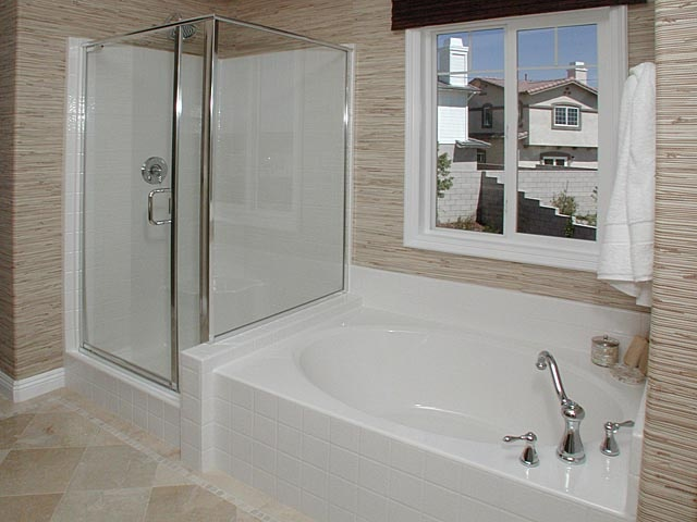 Stand up shower and a nice tub for the homeowner in me for Stand up bath tub