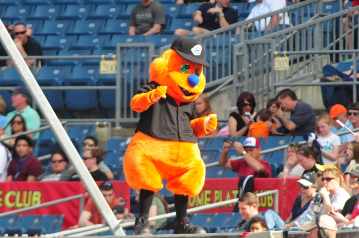 d 08548 syracuse chiefs - photo#2