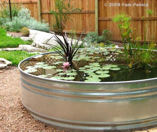 Great container pond GARDENING Pinterest