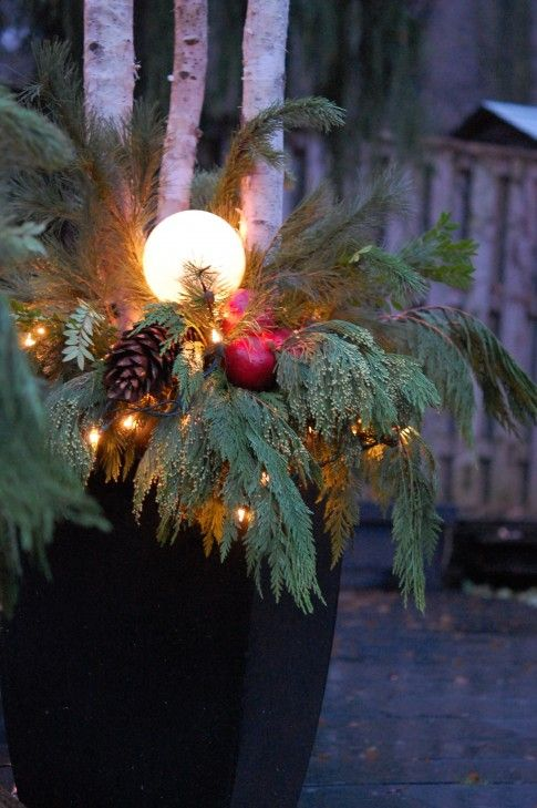 glass globes, mini lights, and greens with birch in planters for Christmas~lovely.