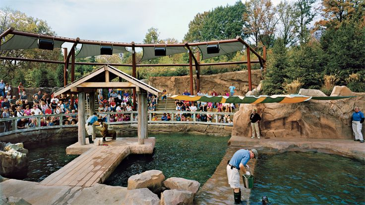 Enjoy FREE ADMISSION & PARKING during regular Zoo hours plus TONS OF DISCOUNTS on camps, classes, concessions, and select rides and events. Membership also includes FREE admission to the splash park, special exhibits, movie nights and more. E-Gift Memberships — Learn how to give the perfect gift. Membership Prices & Benefits.