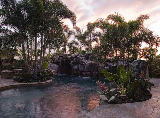Backyard Pool Tropical Paradise Favorite Places