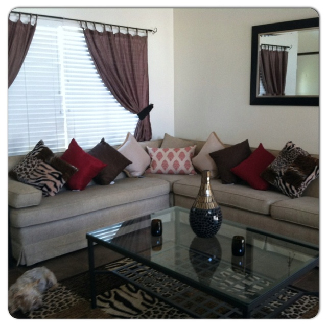 Animal Print Living Room