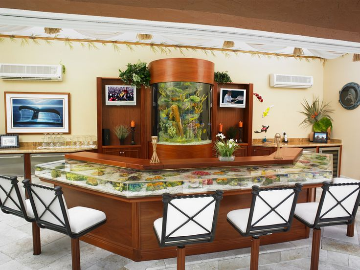 Bar top aquarium aquariofilia aquarium pinterest for Fish tank bar