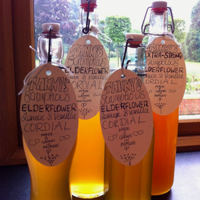 Homemade Elderflower, Lemon & Vanilla cordial - use what's out there ...