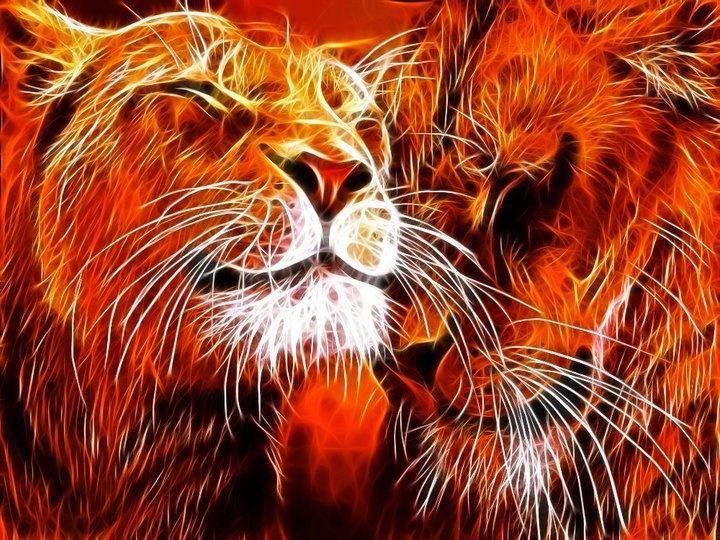 tiger fractal cats e - photo #30