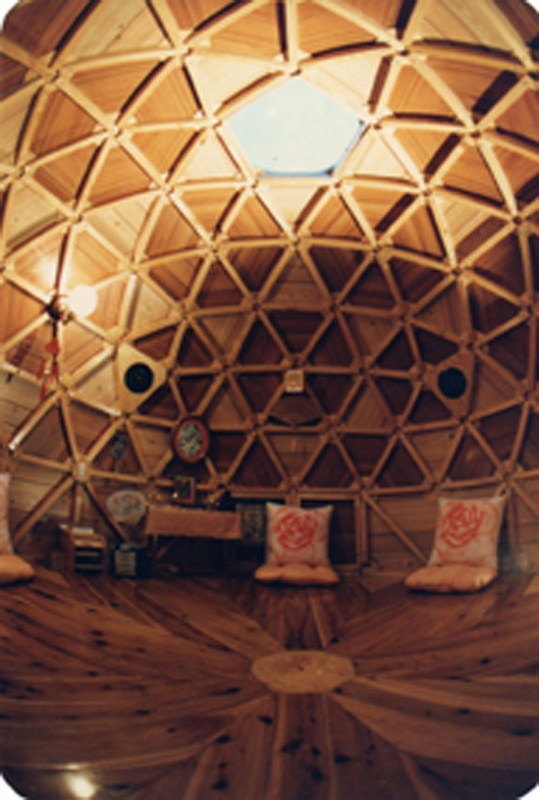 it looks nice for a geodesic dome home geodesic dome