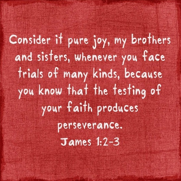 James 1 2 Scripture Quotes Quotesgram