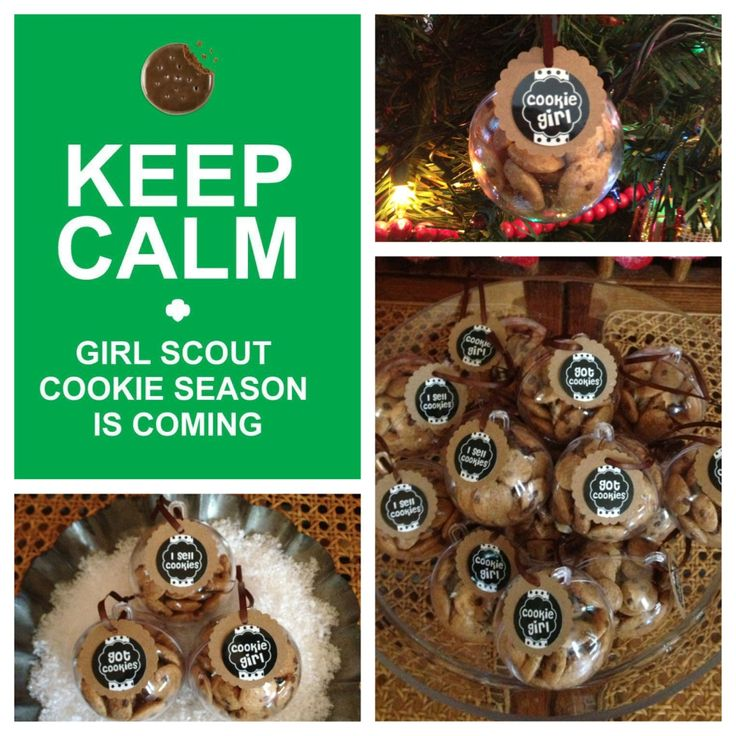 Homemade Christmas Ornaments For Girl Scouts : Pin by miranda rap on girls scouts