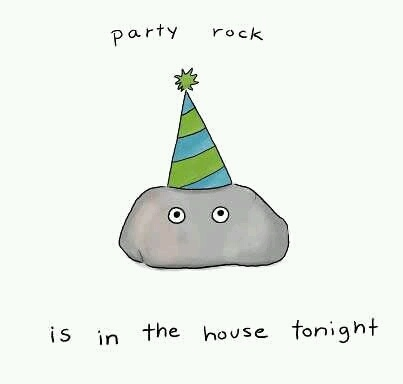 party rock is in the house tonight | funny | Pinterest