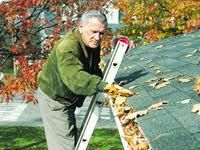 end gutter cleaning - Gutter Ladder - Pinterest