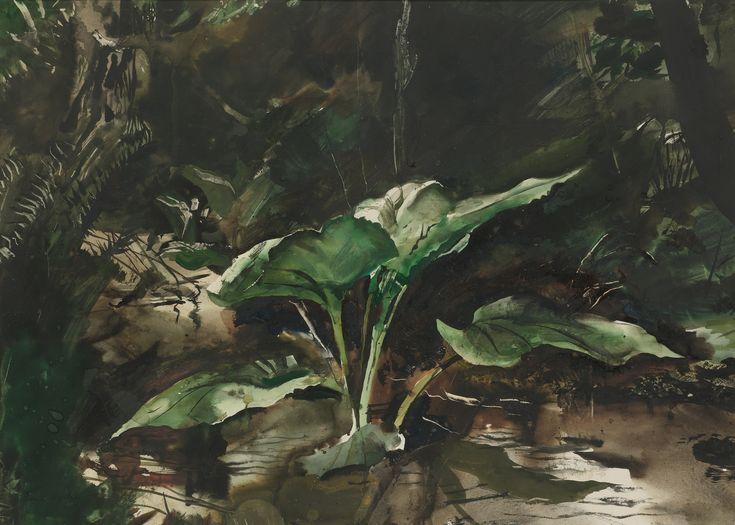 アンドリュー・ワイエスの画像 p1_28