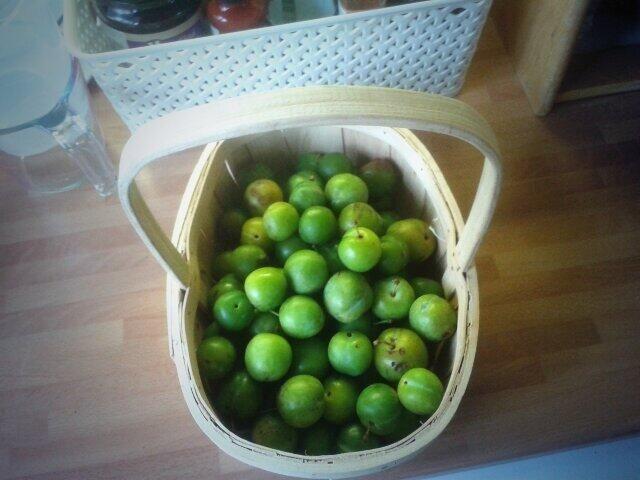 made greengage jam last year | Greengage recipes | Pinterest