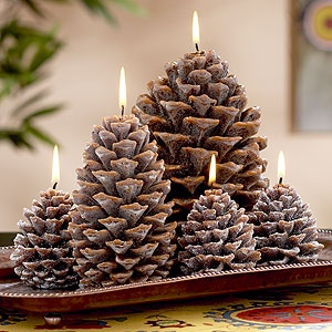pine cone candles :)