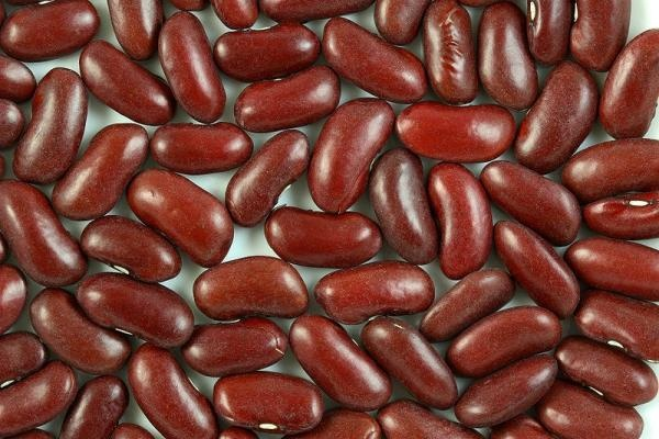 Kidney Beans facts to know so they don't poision you. Yes, thats what ...
