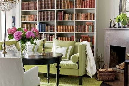 bookcase behind sofa | living with books | Pinterest
