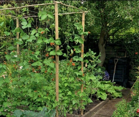 vegetable garden design vertical Herb gardens Pinterest
