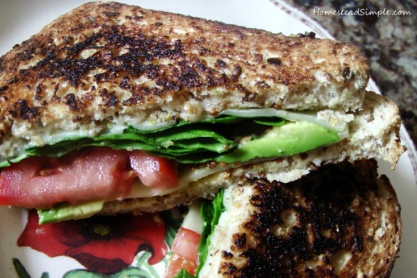 Fancy Grilled Cheese Sandwich Recipe | Foodie Goodies - Sandwiches ...