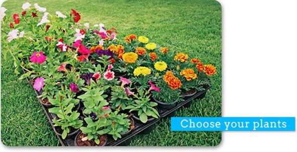 Butterfly Garden Pretty Garden Ideas Pinterest