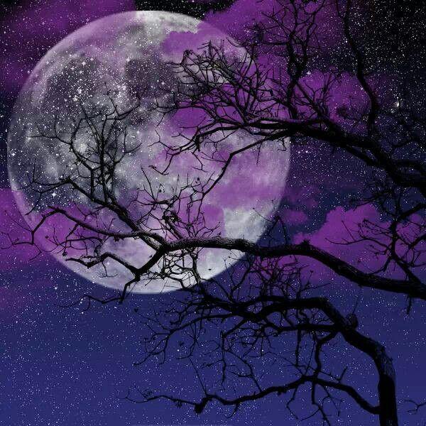 Beautiful | Moon Phases | Pinterest