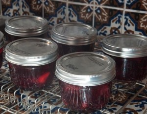Cranberry Strawberry Jam | recipes - canning | Pinterest