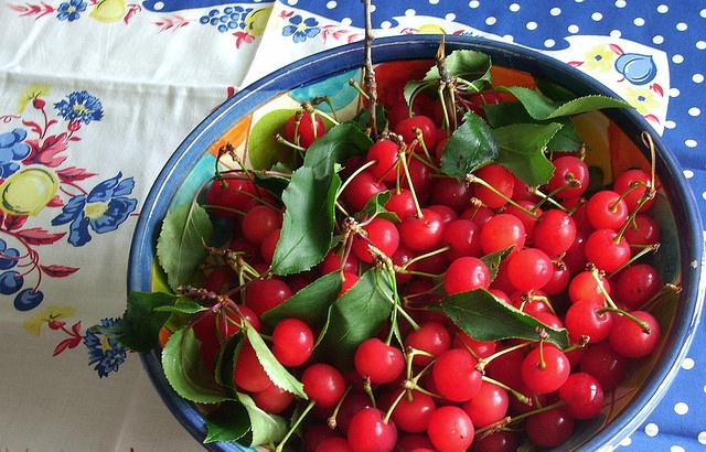 preserved sour cherries | Recipes to try | Pinterest