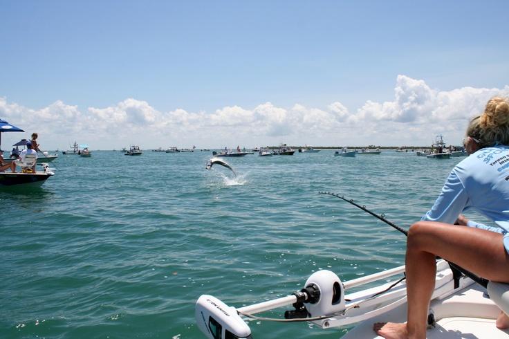 Pin by on fishing destinations pinterest for Boca grande tarpon fishing