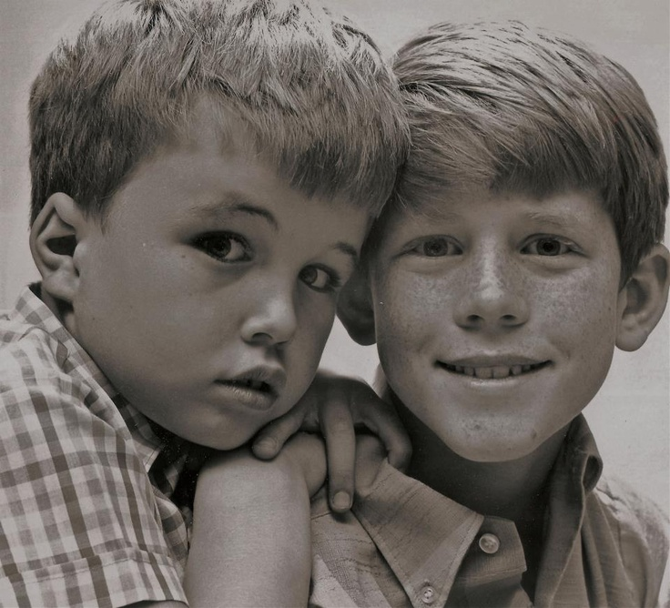 Clint howard and ron howard famous people pinterest
