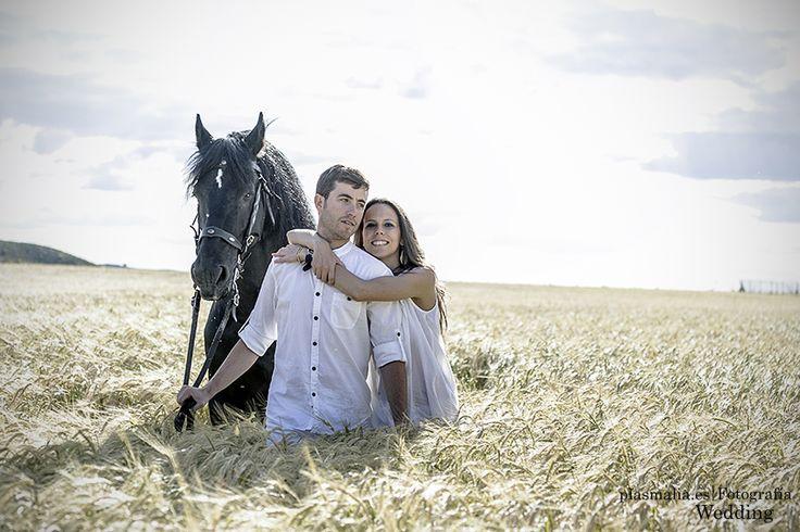 Preboda con caballos en Toledo