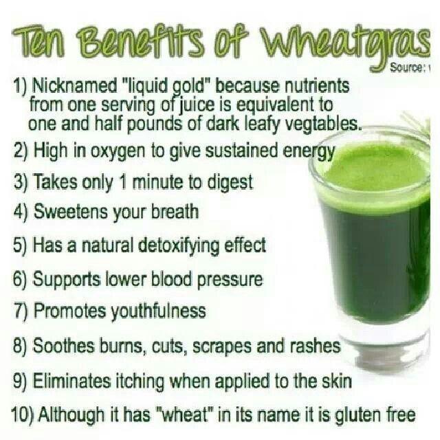 Wheat Grass Drink Health Benefits