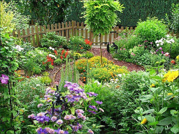 Pin by Mondi on Small Garden Ideas - Kleine Gärten   Pinterest