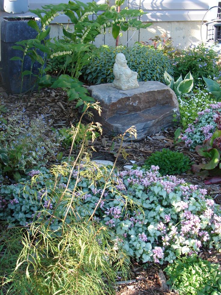 Backyard Shade Garden Ideas Photograph My Shade Garden