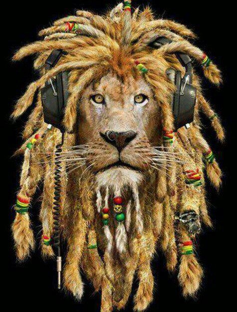 Rasta Lion With Dreads Rasta lion