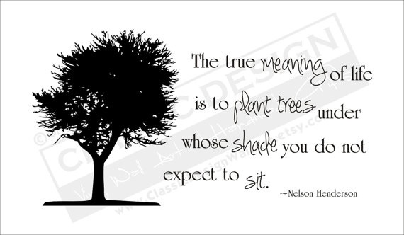 Plant Trees Under Whose Shade Quote : Trees under whose shade you do not expect to sit quot nelson henderson