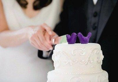 Purple Wedding Cake Topper  Bride and Groom Love Birds by oenopia, $38.00