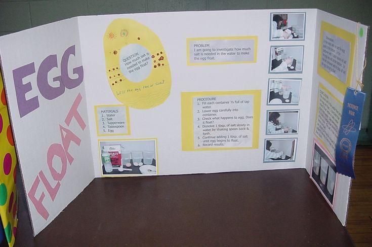 Science Fair Project Ideas