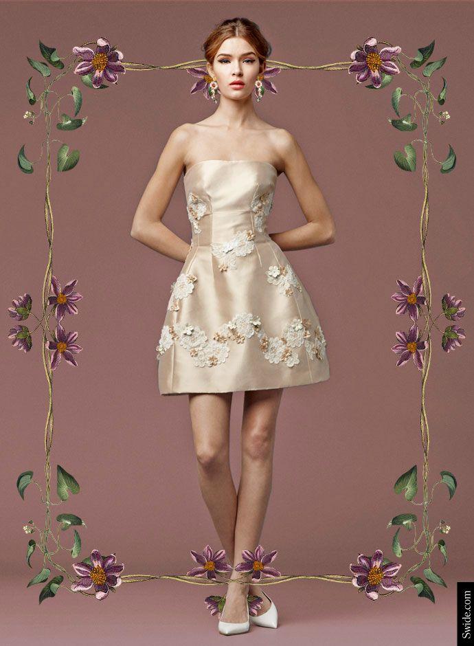 Взгляд день Dolce & Gabbana осень 2014 Преколлекция женской: Кружева Применение Микадо мини-платье -