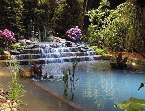 Pool Made To Look Like A Pond For My Future House S Pinterest