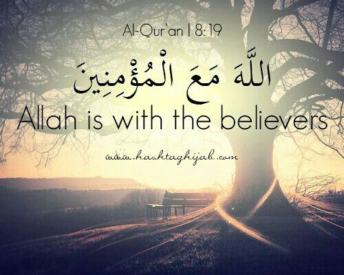 great quotes from the quran quotesgram