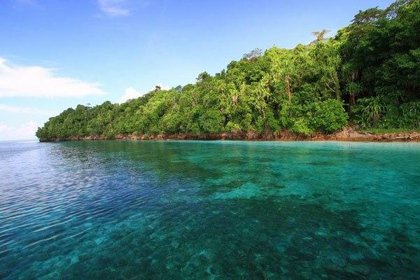 Berau Indonesia  city photos gallery : Kakaban Island, Berau, Indonesia | Nusantara ♥ | Pinterest