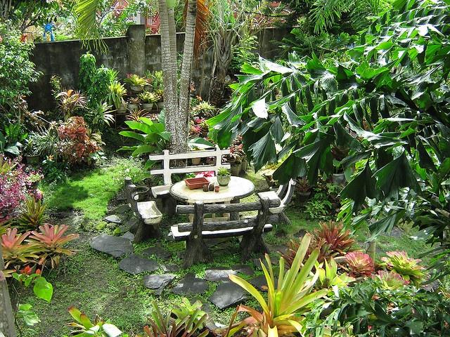 Tropical garden (Philippines)